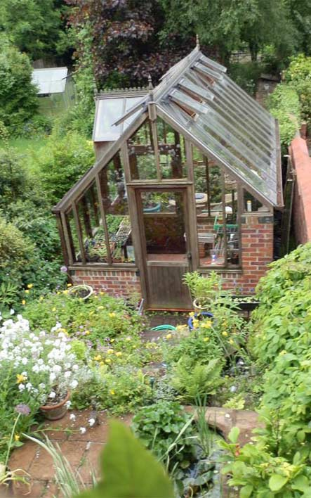 Greenhouse from sitting room window